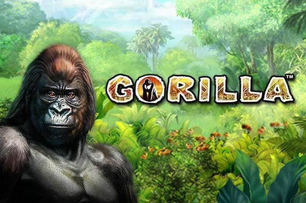 online slots that pay real money gorilla spiele