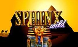 sphinx wild igt