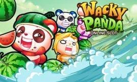 wacky panda microgaming