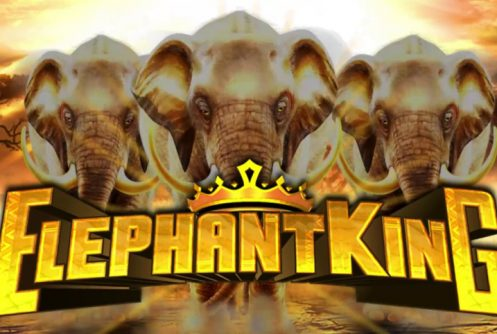 elephant king slot by igt