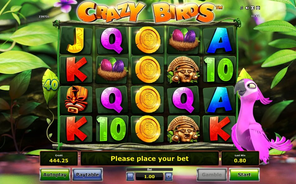 crazy birds party slot by novomatic