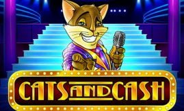 cats and cash slot by play n go