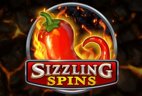 sizzling spins slot by play n go
