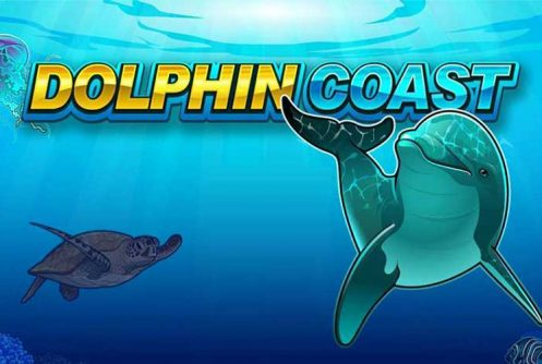 dolphin coast slot by microgaming