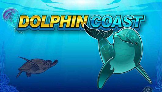 dolphin coast slot by microgaming