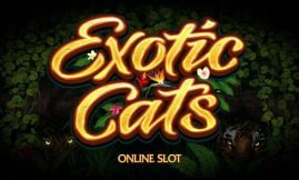 exotic cats slot by microgaming