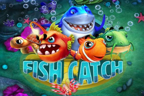fish catch slot by rtg