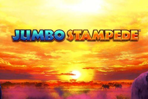 jumbo stampede slot by isoftbet
