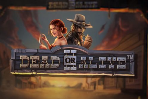 dead or alive 2 slot by netent
