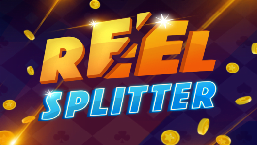 reereel splitter slot by microgaming
