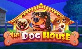 the dog house slot by pragmatic play