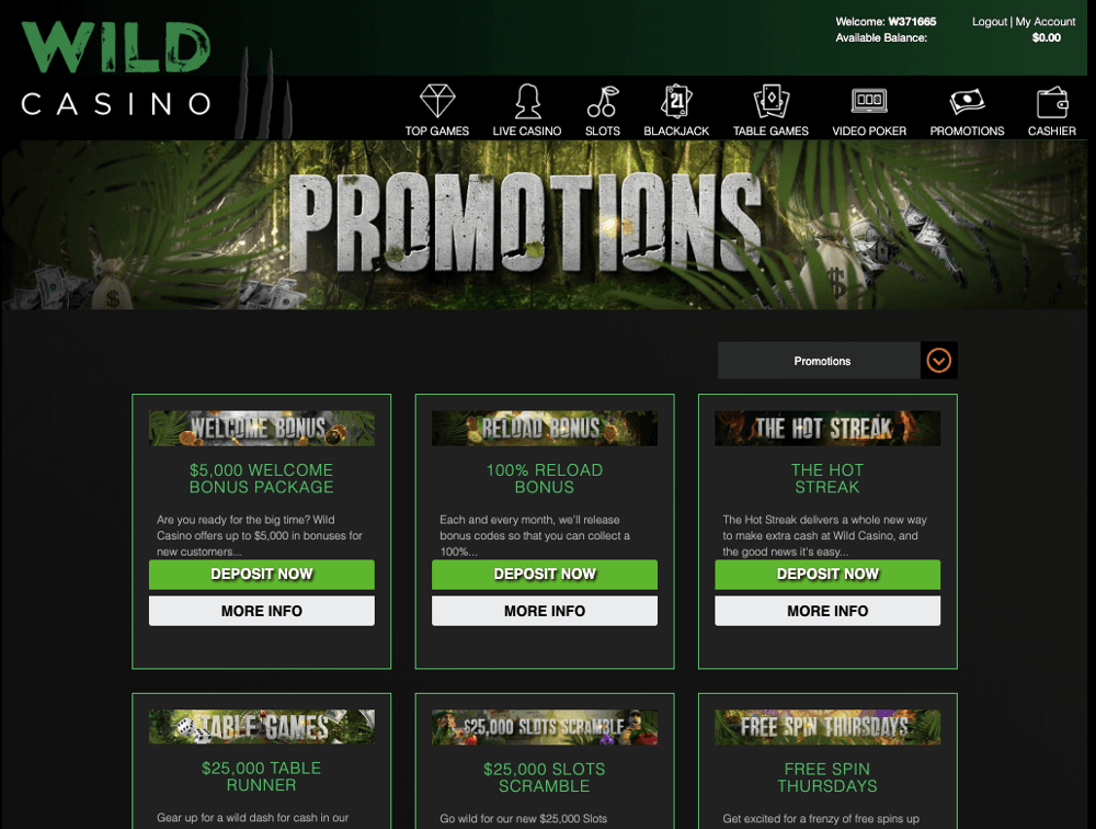 wild casino promotion bonus