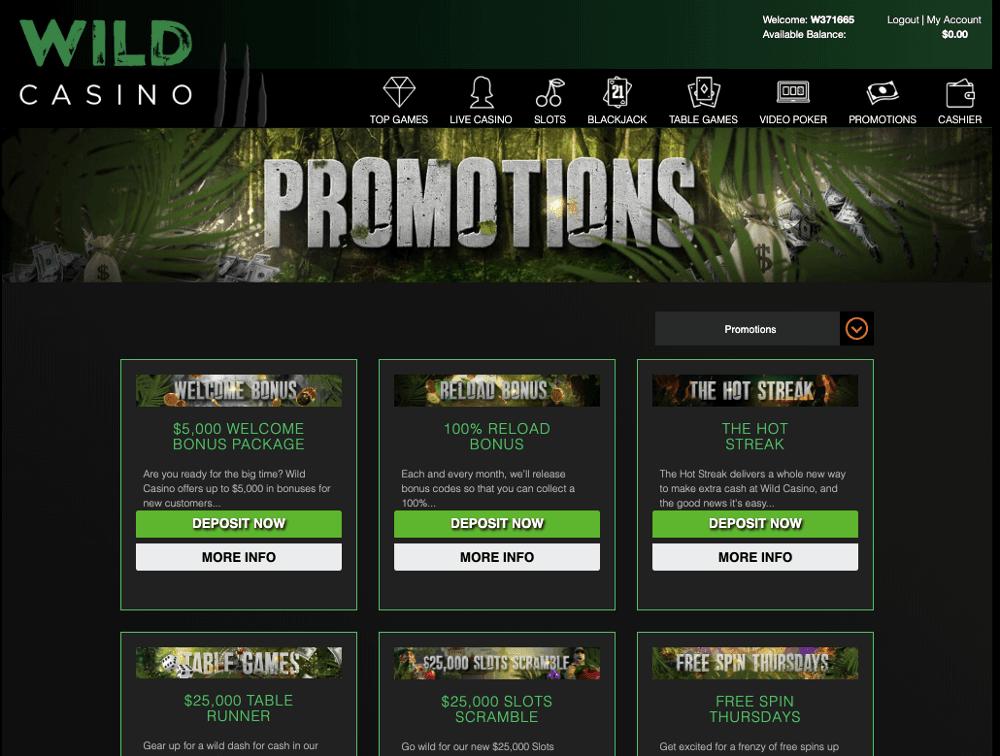 wild casino promotion bonus