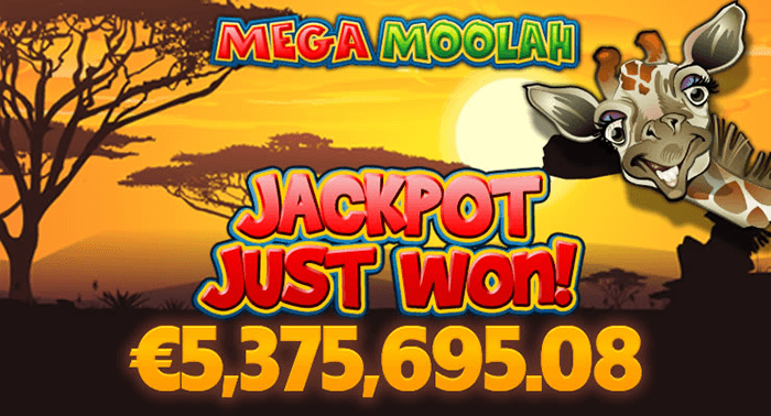 progressive jackpot win
