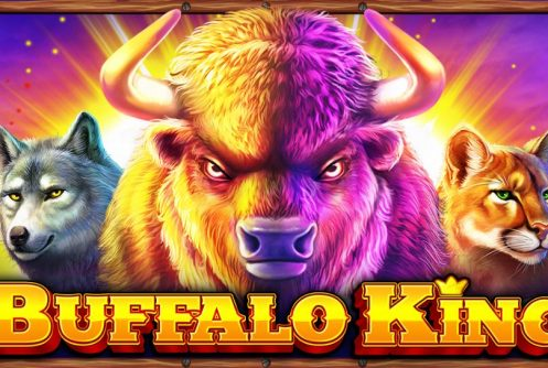 buffalo king slot by pragmatic play