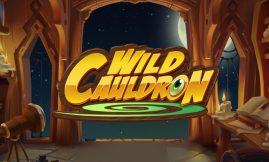 wild cauldron slot by quickspin