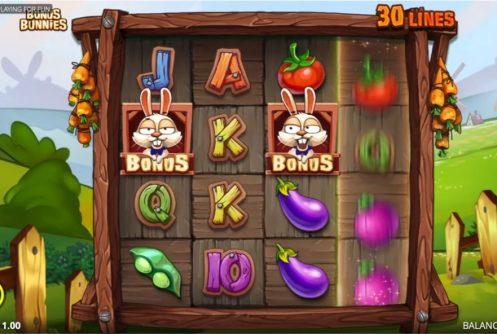 bonus-bunnies-slot-1-497x334