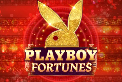 playboy-fortunes-497x334