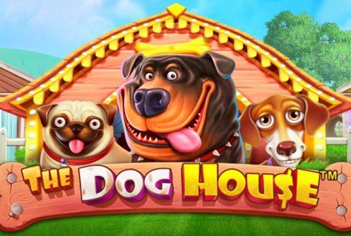 the-dog-house-497x334