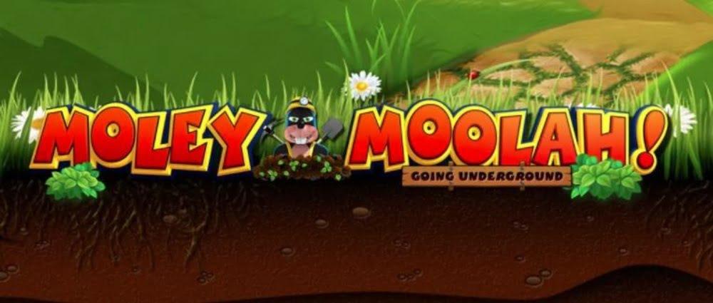 moley moolah slot by yggdrasil