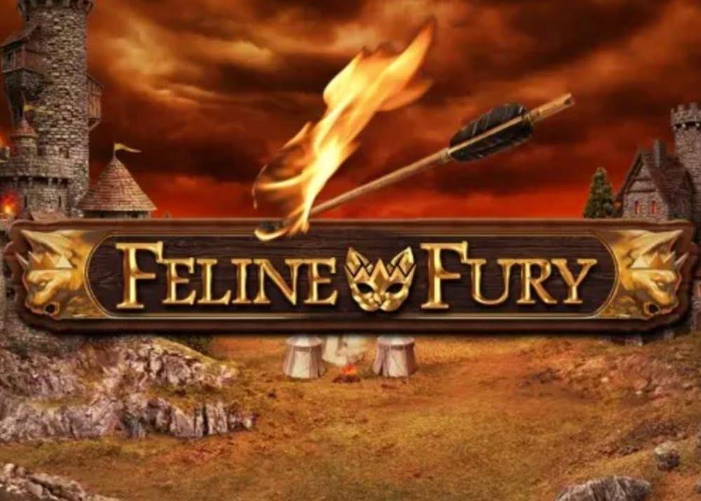 feline fury slot by play n go
