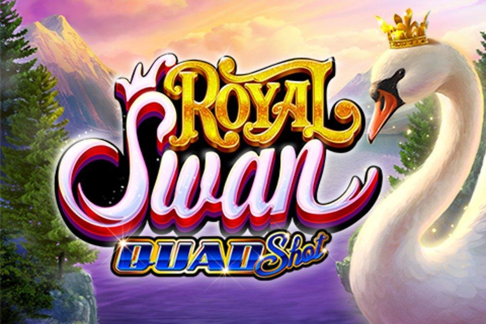 royal swan quadshot
